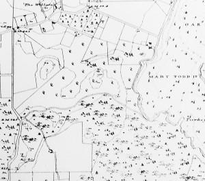 1888 Lang's map detail