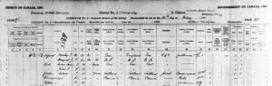 dupont 1891 census lo