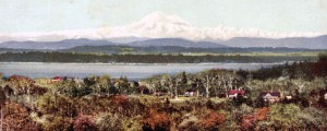 Looking across south Oak Bay to Mt Baker in the USA. The first houses on Island Road are visible in the distance. Unused postcard in my collection.