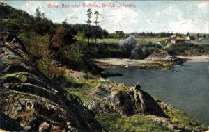 Part of the McNeill estate, looking north from the western edge of McNeill (Shoal) Bay; litho postcard, postmarked 1908, in my collection. In the distance at R is the family home of William McNeill, Jr. The house in the distant centre was later the home of the twins Harriet McNeill Jones and Rebecca McNeill Baker. The cottage near the shore belonged to the A. A. Green family.